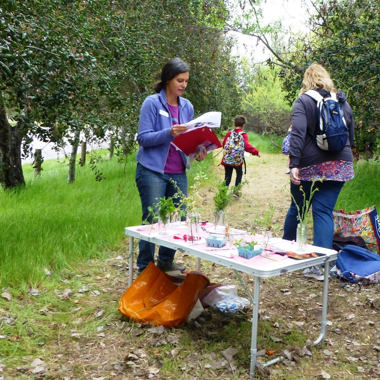Susi Bernstein (CNPS-SLO) - Identification of Trees and Shrubs